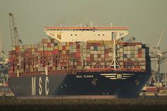 MSC Diana (Jan de Neijs Photography) Tags: ship containerschip containership containerreus vessel megaschip zuidholland holland nederland thenetherlands dieniederlande southholland tamron150600g2 tamron tamron150600 150600 g2 cargo schiff containerschiff maasvlakte rotterdam hvh msc mscdiana imo9755933 9755933 nl hoekvanholland containers monrovia diana