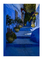 Chefchouen Alleyway with Yellow Pots | Morocco (www.davidrosenphotography.com) Tags: chefchouen morocco travel blue yellow alley alleyway pots street streetculture