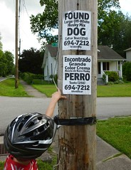 Diversity in the 'hood (Jer*ry) Tags: sign notice posting english spanish utilitypole neighborhood fivepoints huntsville