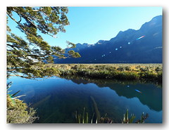 The Mirror Lakes-2. (natureflower photography) Tags: the mirror lakes fiordlandnationalpark southisland newzealand state earl mountains reflection sunnyday trees fromteanau tomilfordsound flares highway94