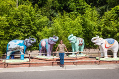 Me with the Four Elephant Statues (SCSQ4) Tags: california elephantstatues elephants losangeles losangeleszoo losangeleszoowildlifesafariphotographyworkshop photographyworkshop statues tripodselfie tuttlecameras
