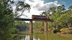 20190514-8366-Maroopna (WallyRail Images) Tags: dieselelectric locomotive train railway railroad transportation australia jt22hc2 clydeengineering emd vline ptv nclass n475 goulburnriver shepparton maroopna 8366 intercity passengrer country bridge span