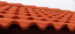 roof tiles (helena.e) Tags: helenae fotö husbil rv motorhome älsa tegel rooftiles