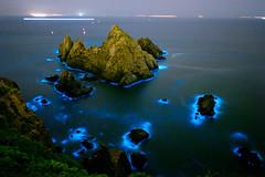 藍眼淚 Sea of stars. (Omi PJ Kuo) Tags: noctilucascintillans seaofstars 藍眼淚 夜光虫 bioluminescent landscapes bioluminescence