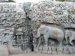 mahabalipuram carvings (kexi) Tags: mahabalipuram mamallapuram tamilnadu india asia stone carvings elephants many old ancient samsung wb690 february 2017 instantfave