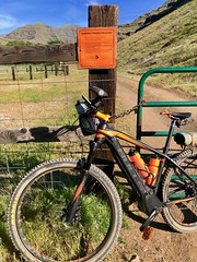 IMG_2043 (Doug Goodenough) Tags: bicycle bike camping pedals spokes ebike bulls evo estream 29 imnaha river oregon spring rpod canyon mountains zumwalt prarie wallowa wallowas drg531 drg53119 drg53119imnaha gravel grinding cycle dirt