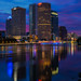 Tampa Tower Reflections Vertical