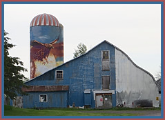 Painted Silo 2 (bigbrowneyez) Tags: farm barn silo painting creative fabulous dof paintedsilo2 windows doors roof beautiful striking amazing delightful nature natura sky bird face wings trees alberi casa cielo uccello stunning fantastic cool awesome artwork artful eagle paintedeagle girl