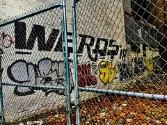 """Chain Link - NYC • <a style=""""font-size:0.8em;"""" href=""""http://www.flickr.com/photos/7243324@N03/32912070527/"""" target=""""_blank"""">View on Flickr</a>"""