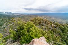 1905 View North from Point 7162 (c.miles) Tags: apachepeak coronadonationalforest evansmountain guthriemountain point7162 ricepeak sanpedrorivervalley santacatalinamountains
