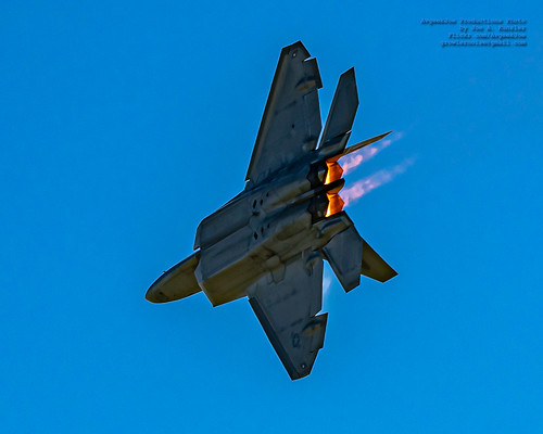 RAPTOR WORKING TO FLASH THE CROWD THE BURNERS
