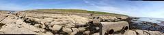 Barassie to Troon Panoramic (36) (dddoc1965) Tags: dddoc davidcameronpaisleyphotographer barassie troon westofscotland northayrshire coastline seafront sand stones rocks beach sunny iphone4 panoramicphotos may14th2019 yachts dddocdavidcameronpaisleyphotographerbarassietroonwestofscotlandnorthayrshireboatsseacoastlinepanoramicphotosholidaywalksmay14th2019