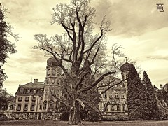 scary tree by the old palace (Ola 竜) Tags: tree palace building architecture mansion trees branches garden landscape sepia monotone monochrome hdr clouds towers windows twigs vintagelook