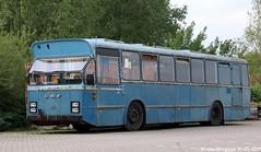 DAF Hainje (XBXG) Tags: daf hainje dafhainje mb200 bus autocar standaard streekbus mb 200 csa standaardstreekbus diesel ruijgoord amsterdam nederland holland netherlands paysbas dutch nederlands accraweg westpoort