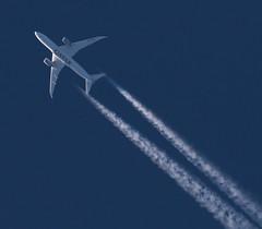 Qatar Airways / Boeing 787-8 Dreamliner / A7-BCN (vic_206) Tags: qatarairways boeing7878dreamliner a7bcn