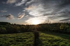 Sunrise on the fields (TristanLohengrin) Tags: sunrise levé de soleil lumière light sun sky clouds ciel nuage landscape paysage nikon d5300 champs field carte postale auvergne france matin morning golden hour