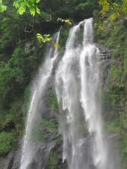 IMG_6423 (kenner116) Tags: taiwan 台灣 新北 newtaipei 烏來 wulai 烏來瀑布 wulaiwaterfall