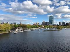 Boston (135/365) (the_real_dorito) Tags: 365the2019edition 3652019 day135365 15may19