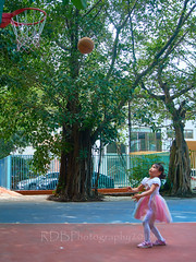 4-6 Yr Old Basketball English Lesson 38 (ArdieBeaPhotography) Tags: boy girl child kids children kindergarten preschooler elementary school age play basketball shoot throw catch pass toss ball leap jump tights white rainbow gauzy skirts trousers shorts shirt tshirt blue glasses court trees shadow leaves tummy navel button bare exposed sandals trainers shoes trackpants outside class learning teaching englishlesson black hair cute pretty beautiful handsome enthusiastic game energetic excited together tamronspaf2875mmf28xrdildasphericalif