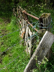 Propped Up (Glass Horse 2017) Tags: fence fencefriday guisboroughforestwalkway barbedwire rust gate ramshackled rusty proppedup weedy