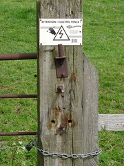 Foxy Fence Post (Glass Horse 2017) Tags: fence fencefriday pinchinthorpe guisboroughforestwalkway fox chain electricfence rust warning