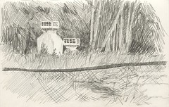 Protruding (Bohdan Tymo) Tags: pencil drawing sketch grass