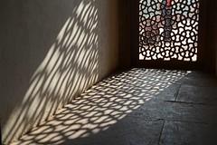 INDIA: Delhi (gabrielebettelli56) Tags: asia delhi light nikon travel viaggi