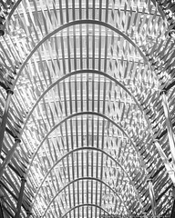 Toronto Abstraction I (mhoffman1) Tags: bceplace brookfieldplace calatrava ontario sonyalpha toronto abstract architecture blackandwhite lines monochrome shadows canada