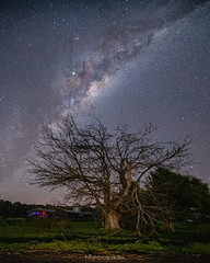 Bereft of cover under the cover of the sky (nightscapades) Tags: astronomy astrophotography autopanopro blackheadpoint galacticcore gerroa illawarra kiama milkyway night nightscapes nowra numbaa pano panorama panos shoalhaven sky southcoastnsw stars stitch terara wollongong newsouthwales australia
