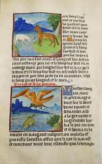 Manuscript page from Vie et fables d'Ésope - Julien Macho, end 15th Century (Monceau) Tags: manuscript page vieetfablesdésope julienmacho 15thcentury