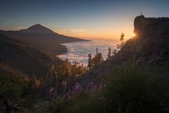 Parque Nacional del Teide (Pablo RG) Tags: teide tenerife atardecer primavera paisaje landscape sunset nikon nature spring travel viajes sky sun