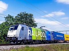 LINΞΛS 186-295 met P&O container shuttle @ Kermt (Hasselt) (Avinash Chotkan) Tags: railpool railcolor br186 traxx lineas po containers trains belgium ferrymasters 186295