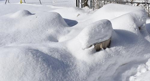 After a Huge Snowfall