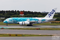 All Nippon Airways [NH][ANA] / JA382A / A380-841 / RJAA (starger64) Tags: canoneos5dmarkiv ef1004004556lisii rjaa nrt naritainternationalairport 成田国際空港 成田機場 allnipponairways ana 全日空 全日本空輸 ja382a a380841 a380 a380800 a388 aviation aircraft airplane arlines airbus nh9398