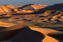 Golden Hour @ Rub' al Khali, Oman (Avisekh) Tags: rabalkhali emptyquarter sand dunes oman middleeast goldenhour arab wwwavisekhphotographycom nikon d850 70200f4 rrs bw polarizer tripod