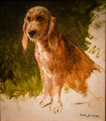 Rosa Bonheur - Study of a Dog, 1860 at Princeton Art Museum Princeton NJ (karadogansabri) Tags: french princeton newjersey unitedstates us rosa bonheur study dog 1860 art museum nj museo musée musee muzeum museu musum müze finearts fine arts gallery gallerie beauxarts beaux galleria new jersey painting pet