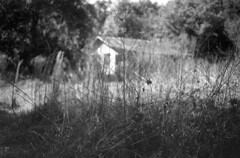 Once a Home (PositiveAboutNegatives) Tags: leica slr leicaflex vintagecamera leicaflexsl 35mm 35mmelmarit leicar leitz film analog bw blackandwhitefilm foma fomapan fomapan100 kodak hc110 dilutionb coolscan florida abandoned empty deserted vacant derelict