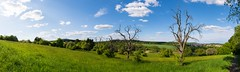 Gleiberger Land (Frawolf77) Tags: gleiberg krodorf hessen landschaft landscape tree baum bäume trees spring