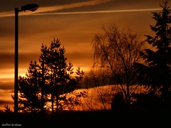 Morgenstund hat Gold im Mund (The early bird catches the worm) (skruemel86) Tags: sonnenaufgang bäume laterne himmel wolken goldhimmel goldig landschaft sunrise cute golden sky clouds lantern trees landscape panasonic lumix fz82