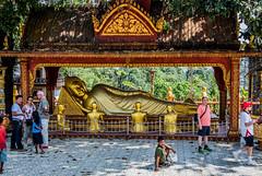 2019 - Cambodia - Sihanoukville - Wat Krom - 4 of 6 (Ted's photos - Returns late November) Tags: 2019 cambodia cropped nikon nikond750 nikonfx tedmcgrath tedsphotos vignetting sihanoukvillecambodia sihanoukville watintnhean watintnheansihanoukville sihanoukvillewatintnhean watintnheancambodia watintnheanrecliningbuddha recliningbuddhawatintnhean watkrom watkromsihanoukville sihanoukvillewatkrom watkromcambodia cambodiawatkrom recliningbuddha watkromrecliningbuddha recliningbuddhawatkrom railing buddha