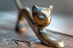 In ancient times cats were worshipped as gods, they have not forgotten this (Peter Jaspers (sorry, less time to comment)) Tags: frompeterj© 2019 olympus zuiko omd em10 macro macromondays copper cat figurine statuette dof home