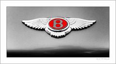 The winged B (G. Postlethwaite esq.) Tags: bentley bluebellinn dof derbyshire farnahgreen sonya7mkii unlimitedphotos badge bokeh classiccars closeup depthoffield photoborder pub selectivefocus
