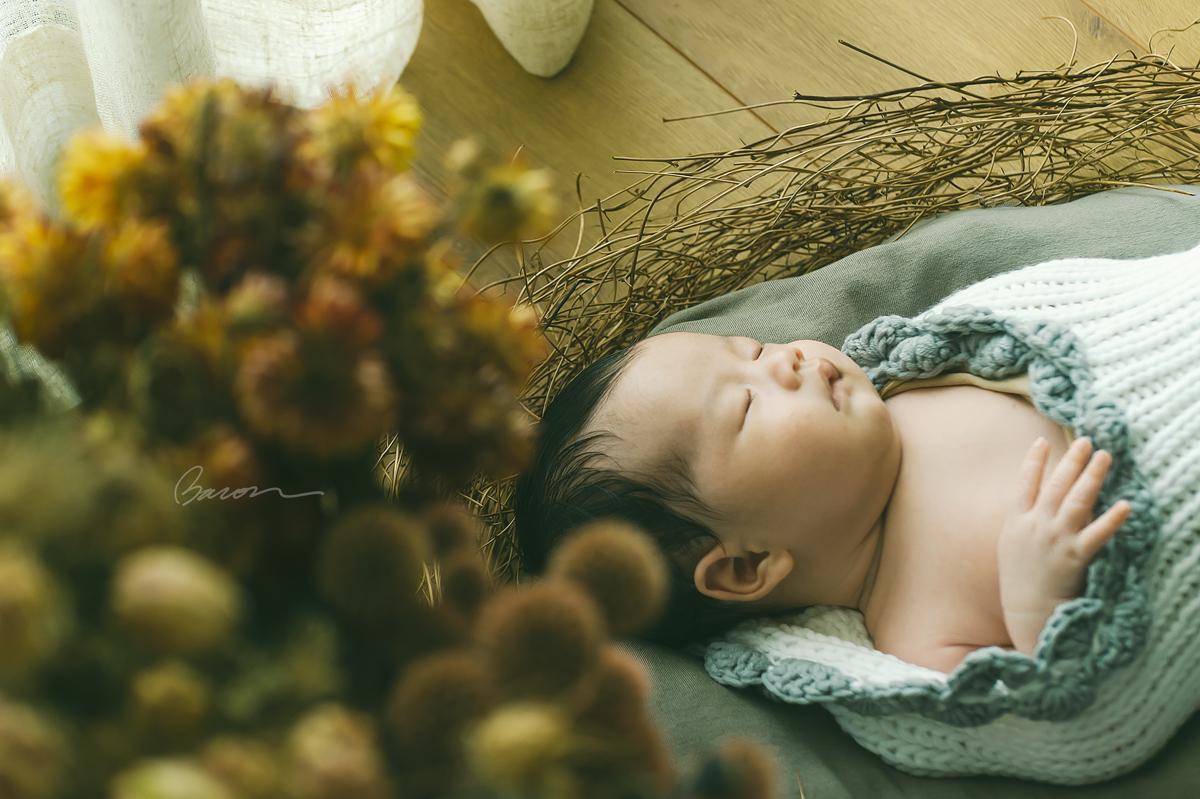 BAC_5835,Newborn Baby,親子寫真, 新生兒寫真, BACON PHOTOGRAPHY STUDIO, 婚攝培根, 一巧攝影