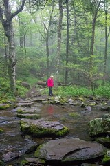 Early morning hike in the Shenandoah National Park (ABWphoto!) Tags: usa virginia shenandoahnationalpark park outdoors nature woods trail streamhiking woman middleagedwoman onewoman hiking rocks trees foggy rain