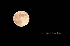Cocciuluna (cocciula) Tags: moon luna lunapiena cagliari casteddu cocciulhouse tonda piena cielo sky notte night