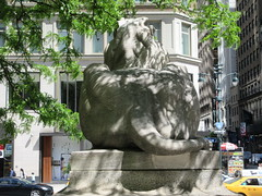 2019 Lion Under Shady Branches New York Public Library 8743 (Brechtbug) Tags: 2019 lions new york public library statues lion hanging shadows 42nd street 5th avenue nyc 05182019 may springtime soon spring weather eventually animal cat feline statue sculpture art cats ave st gargoyles gargoyle reclining repose resting facade stairs front entrance