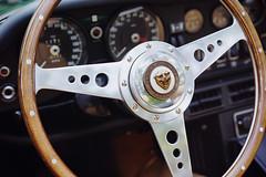 Inside the E-Type (Eric Flexyourhead) Tags: vancouver canada britishcolumbia bc vandusenbotanicalgarden 2019 allbritishfieldmeet abfm car motor detail fragment british english jaguar xke jaguarxke etype jaguaretype interior steeringwheel motolita shallowdepthoffield sonyalphaa7 zeisssonnartfe55mmf18za zeiss 55mmf18