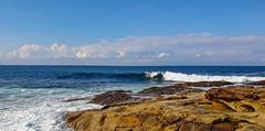 Dee Why Beach, NSW, Australia (nictink) Tags: beaches dee why waves surfers surf nature rocks rockpools birds seagulls ocean seasideseaocean tides