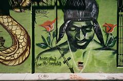 Mural (bingley0522) Tags: contaxiia carlzeissbiogon35mmf28 kodakcolorplus200 sanfrancisco jackkerouacalley mural streetart autaut urbanlandscape