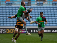 Ross Chisholm (davidhowlett) Tags: ricoharena quins wasps premiership waspsrugby gallagher rugbyunion ricoh rugby coventry harlequins